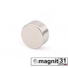 Магнит диск D10x5 мм. сила 2,5 кг.